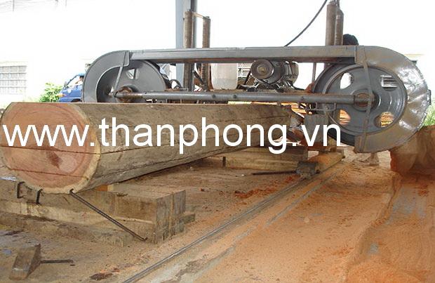 CÔNG TY TNHH SX TM THẦN PHONG
